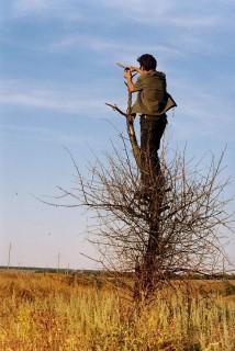 Ramon и Дерево