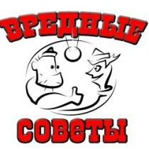 1229679119_soveti_001