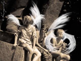 "Брошенные ""ангелы"""
