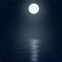 moonshinelight