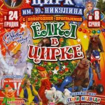 Цирк Ю Никулина