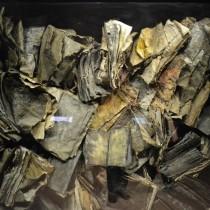 Книги сожженных людей (концлагерь, Краков, Польша)